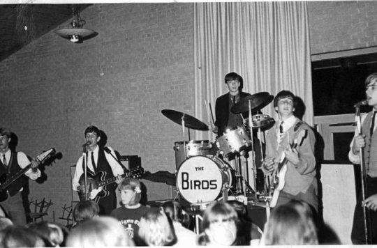http://hinsdale1967.com/wp-content/uploads/2017/05/Jan_Janura_on_the_guitar_in_The_Birds_in_1967-540x356.jpg